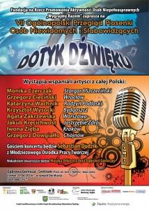 dotyk-dzwieku-2014-731x1024